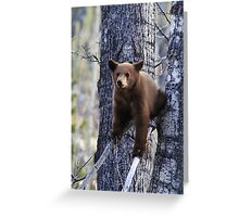 Holding On Greeting Card