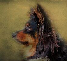 my beauty by lucyliu