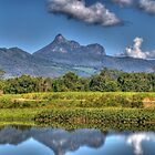 Mt Warning, NSW, Australia by Adrian Paul