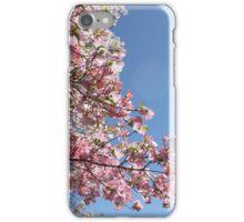 Blossom Sky iPhone Case/Skin