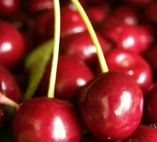 Delicious Fresh Ripe Cherries by MaggieO