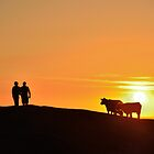 Sunset Walk  by Steve