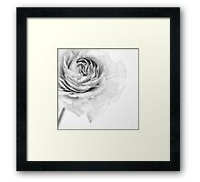 Essence Framed Print