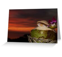 coconut sunset Greeting Card