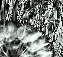 My Weeds & I Love 'Em by Lenore Senior