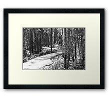 Curves In The Path Framed Print