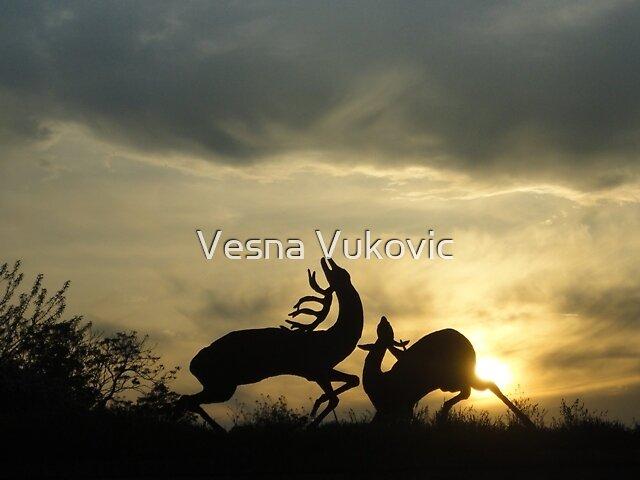 Sunset by Vesna ©
