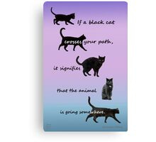 If a black cat  Canvas Print
