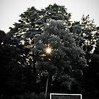 Soccer at Sunset by MasonJarMedia