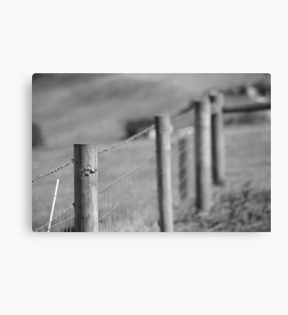 fence-black/white Canvas Print