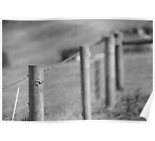 fence-black/white Poster