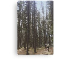 Forest Wanderers Canvas Print