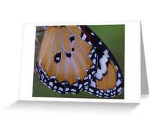 Wings of a Butterfly Greeting Card