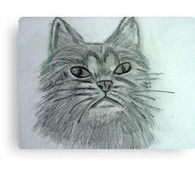 Justa Cat Canvas Print