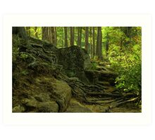the green enchanted forest Art Print