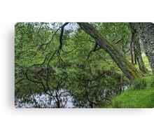 Lake near Glenridding, Cumbria Canvas Print