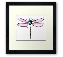Drawing Day Dragonfly Framed Print