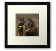 prairie dogs Framed Print