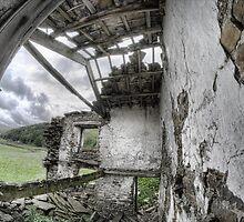 Derelict farmhouse near Muker by Guy Carpenter