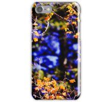 Autumn Leaves Along Palisades Creek iPhone Case/Skin