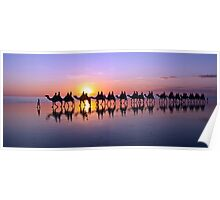 Iconic Camels on Cable Beach Poster