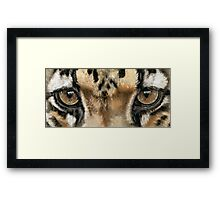 Eye-Catching Clouded Leopard Framed Print