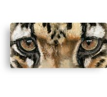 Eye-Catching Clouded Leopard Canvas Print