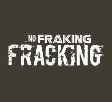 No Fraking Fracking by John Ossoway