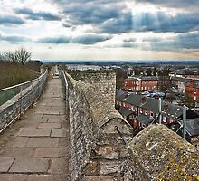 Lincoln fron the castle battlements by Roy Griffiths