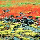 The summer colors of Iclandic earth ! by siggabach