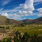 View over Raqchi - Raqchi, Peru by Phil McComiskey