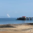 Mumbles Peer by Crin