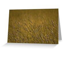 Rye Grass Greeting Card