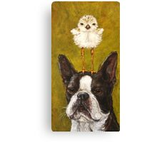 Boston and Plover Canvas Print