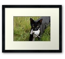First Kill Framed Print