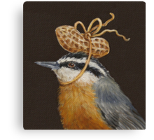Red-breasted nuthatch with peanut Canvas Print