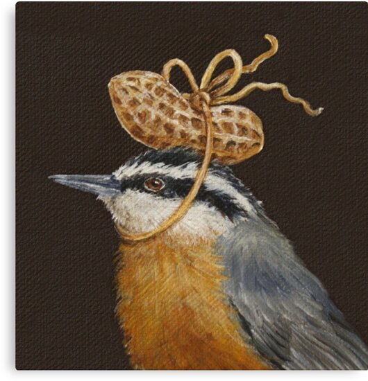 Red-breasted nuthatch with peanut by Vicki Sawyer
