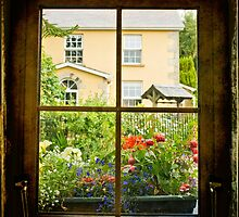Through the Window by Margaret Goodwin
