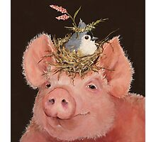 Pig and Titmouse Photographic Print