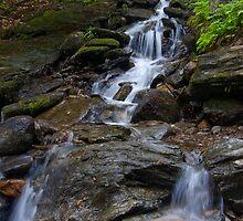 Feeding Bingham Falls by Murph2010