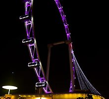 The Singapore Flyer by imrul