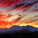 sunset panorama - tweed valley  by carol brandt