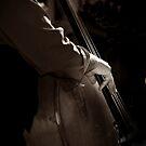Bass Strings by Mojca Savicki
