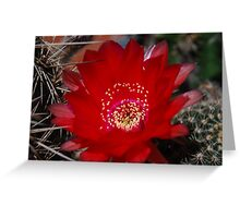 Dangerous Beauty Greeting Card