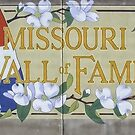 The Missouri Wall of Fame by barnsis