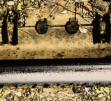 Railroad Track Abstract by Lenore Senior