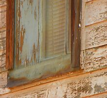 Window by Lenore Senior