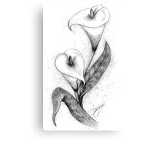 Calla Lillies -2 Canvas Print