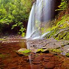 Russell Falls Mt Field NP by lee Henley