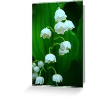 Tiny bells of spring Greeting Card